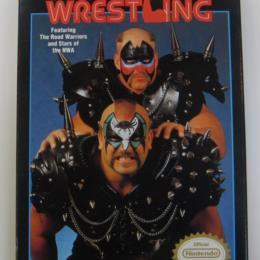 WCW: World Championship Wrestling, FCI, 1990
