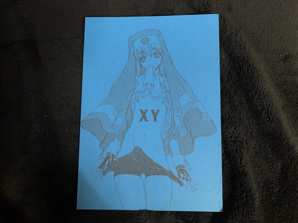 XY (Japan)