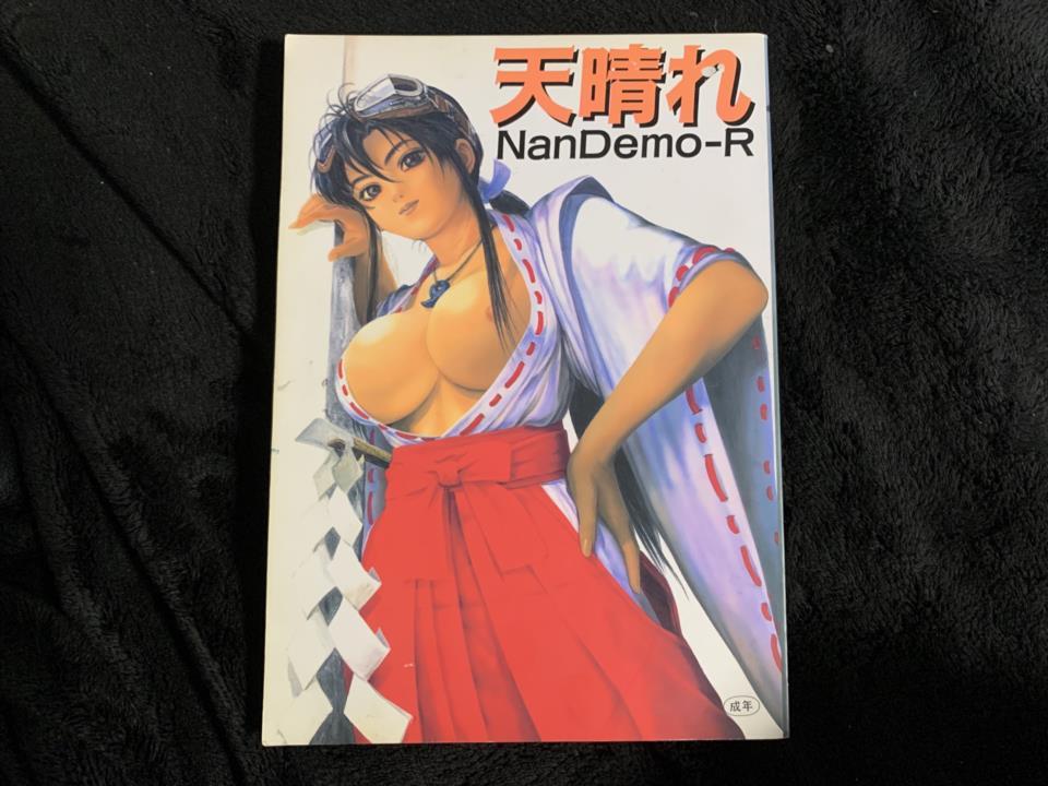 Brilliant Nan Demo-R (Japan)