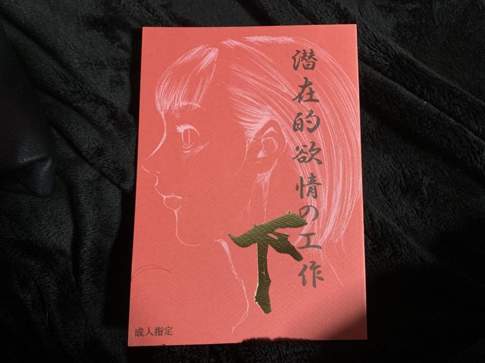 Latent Desires Works 2 (Japan)