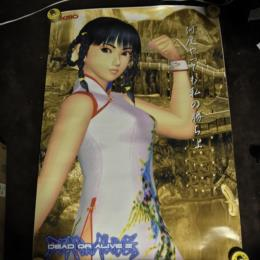 DEAD OR ALIVE 2 Arcade Lei-Fang (Japan)