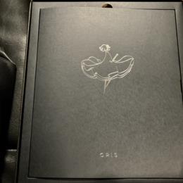 GRIS ART BUNDLE (US) by NOMADA STUDIO