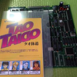Tao Taido (Japan) by VIDEO SYSTEM