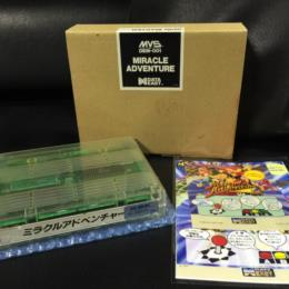 Miracle Adventure (Japan) by DATA EAST