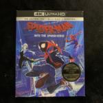 SPIDER-MAN: INTO THE SPIDER-VERSE (US)