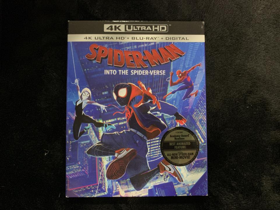 SPIDER-MAN: INTO THE SPIDER-VERSE (US)