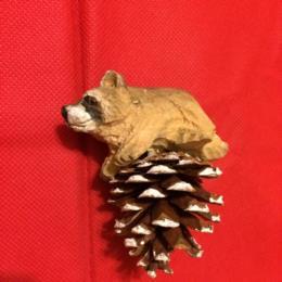 WL Raccoon Pine Cone