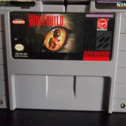 Wolfchild, Virgin, 1993