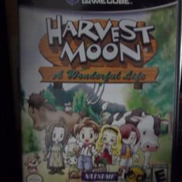 Harvest Moon: A Wonderful Life, Natsume, 2004