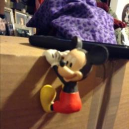 Mickey Plant Hanger