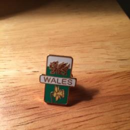 Travel Wales Dragon And Daffodil